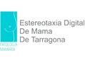 Logo-estereotaxia